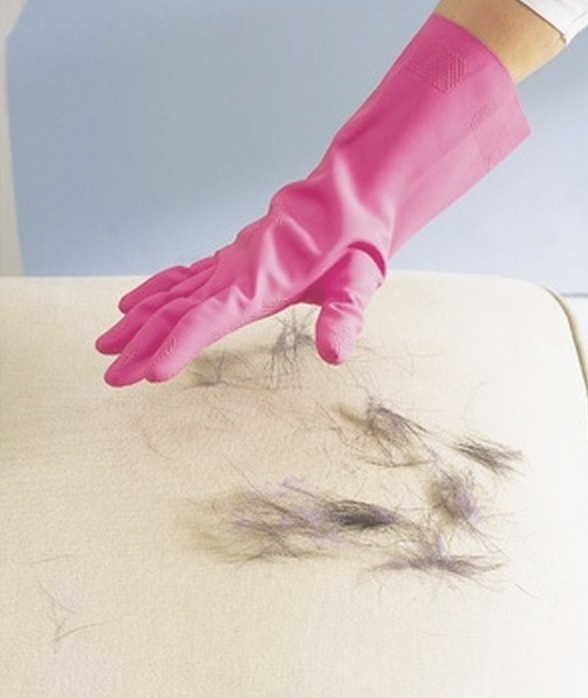How to remove pet hair from upholstery