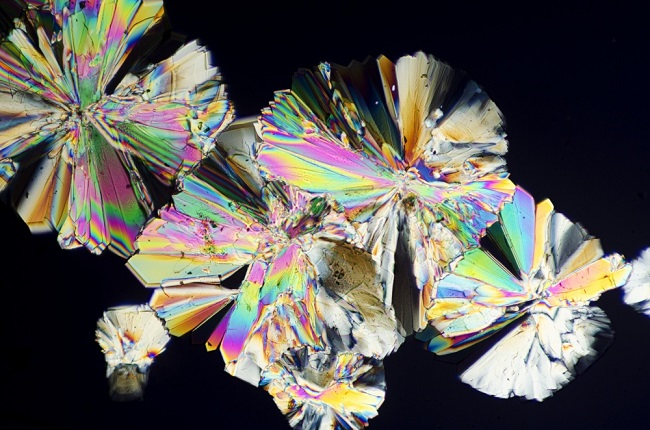 Sugar Crystal under microscope