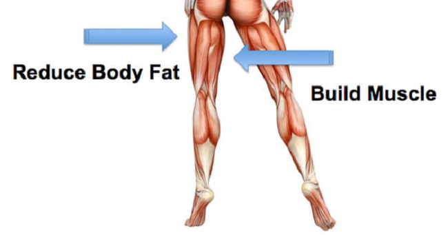 How to lose body fat off legs picture 1