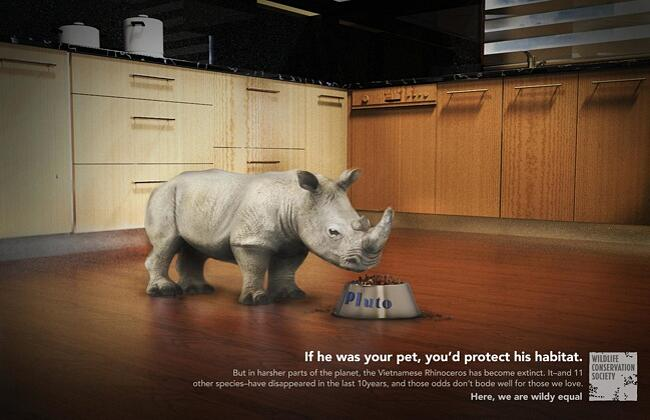 """If he was your pet, you'd protect his habitat"""