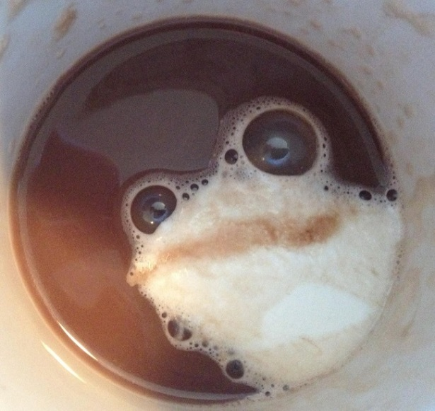 Froggy Coffee