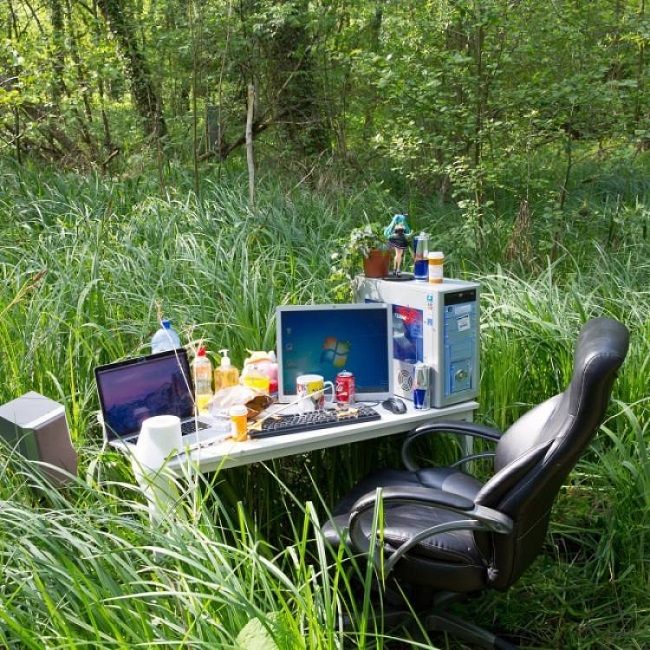 Natural setting to work