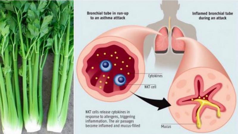 Lowers your uric acid
