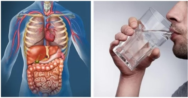 5 Things that will happen to your body if you drink only water for 30 days
