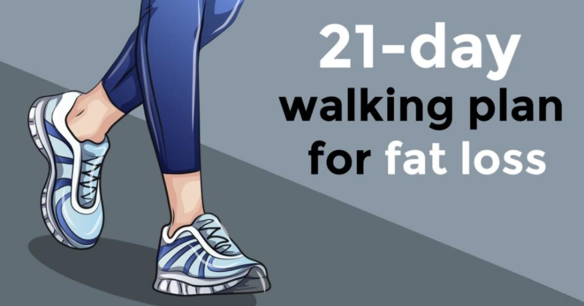 Lose fat gain curves image 4